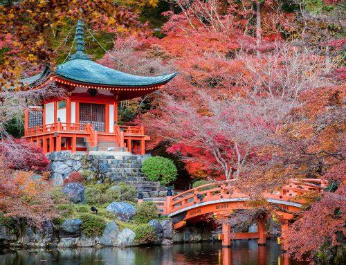 Herbstausflug nach Kyoto